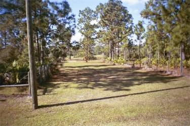A typical Prairie Creek Park Green Belt/Horse Trail